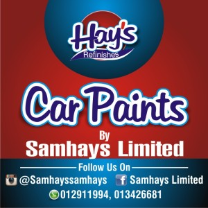 Hays Paint Brand